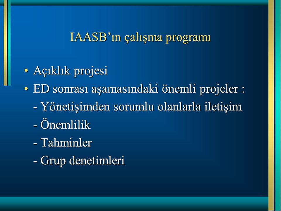IAASB'ın çalışma programı