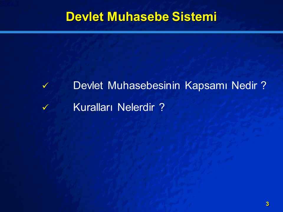 Devlet Muhasebe Sistemi