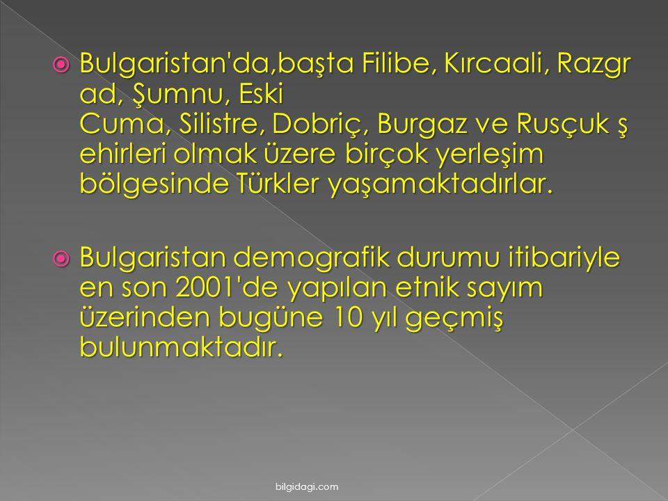 Bulgaristan da,başta Filibe, Kırcaali, Razgrad, Şumnu, Eski Cuma, Silistre, Dobriç, Burgaz ve Rusçuk şehirleri olmak üzere birçok yerleşim bölgesinde Türkler yaşamaktadırlar.