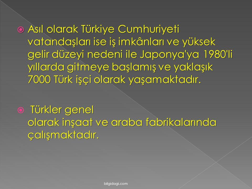 Türkler genel olarak inşaat ve araba fabrikalarında çalışmaktadır.