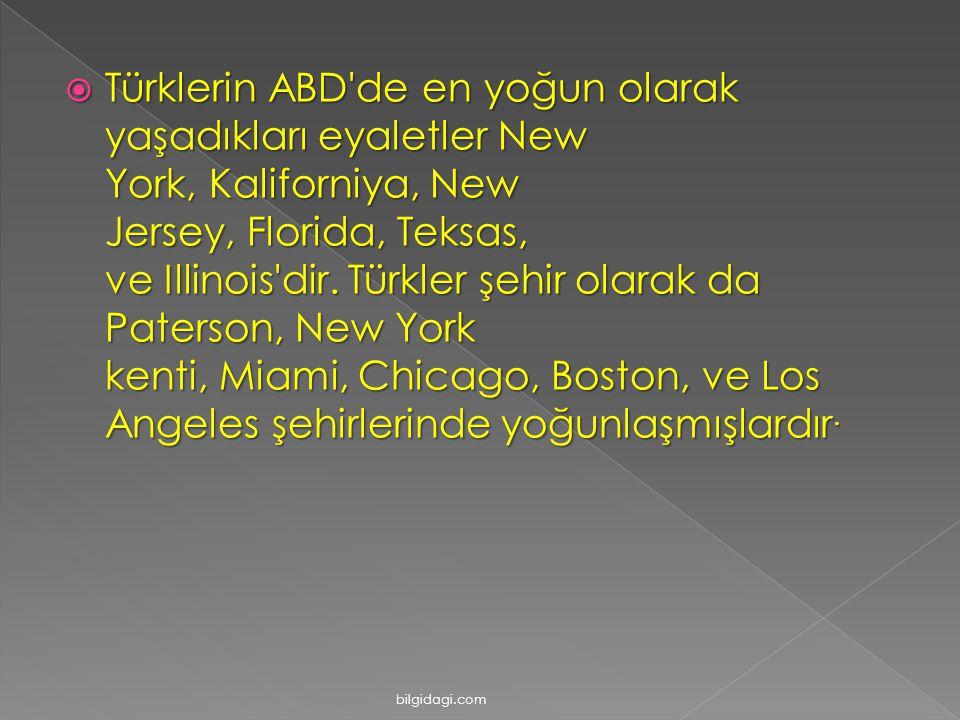Türklerin ABD de en yoğun olarak yaşadıkları eyaletler New York, Kaliforniya, New Jersey, Florida, Teksas, ve Illinois dir. Türkler şehir olarak da Paterson, New York kenti, Miami, Chicago, Boston, ve Los Angeles şehirlerinde yoğunlaşmışlardır.