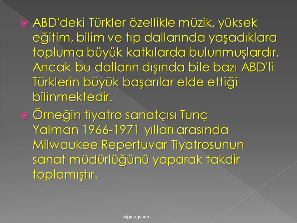 ABD deki Türkler özellikle müzik, yüksek eğitim, bilim ve tıp dallarında yaşadıklara topluma büyük katkılarda bulunmuşlardır. Ancak bu dalların dışında bile bazı ABD li Türklerin büyük başarılar elde ettiği bilinmektedir.