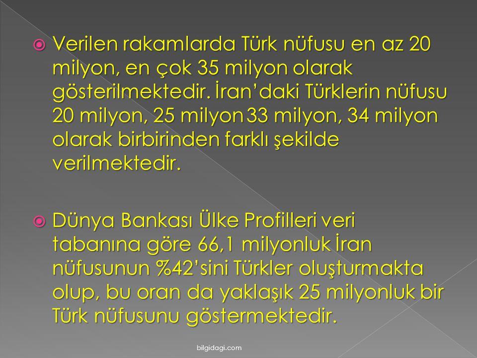 Verilen rakamlarda Türk nüfusu en az 20 milyon, en çok 35 milyon olarak gösterilmektedir. İran'daki Türklerin nüfusu 20 milyon, 25 milyon 33 milyon, 34 milyon olarak birbirinden farklı şekilde verilmektedir.