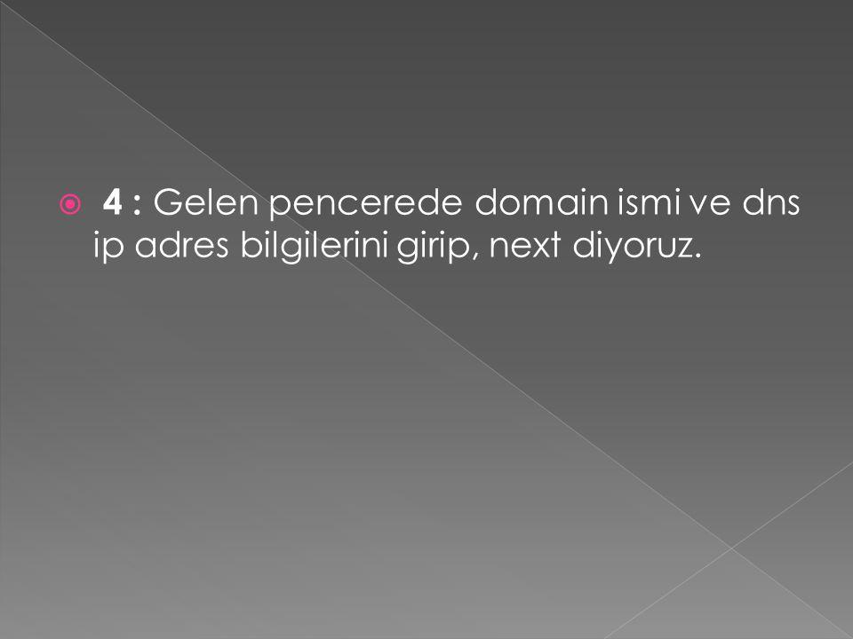 4 : Gelen pencerede domain ismi ve dns ip adres bilgilerini girip, next diyoruz.