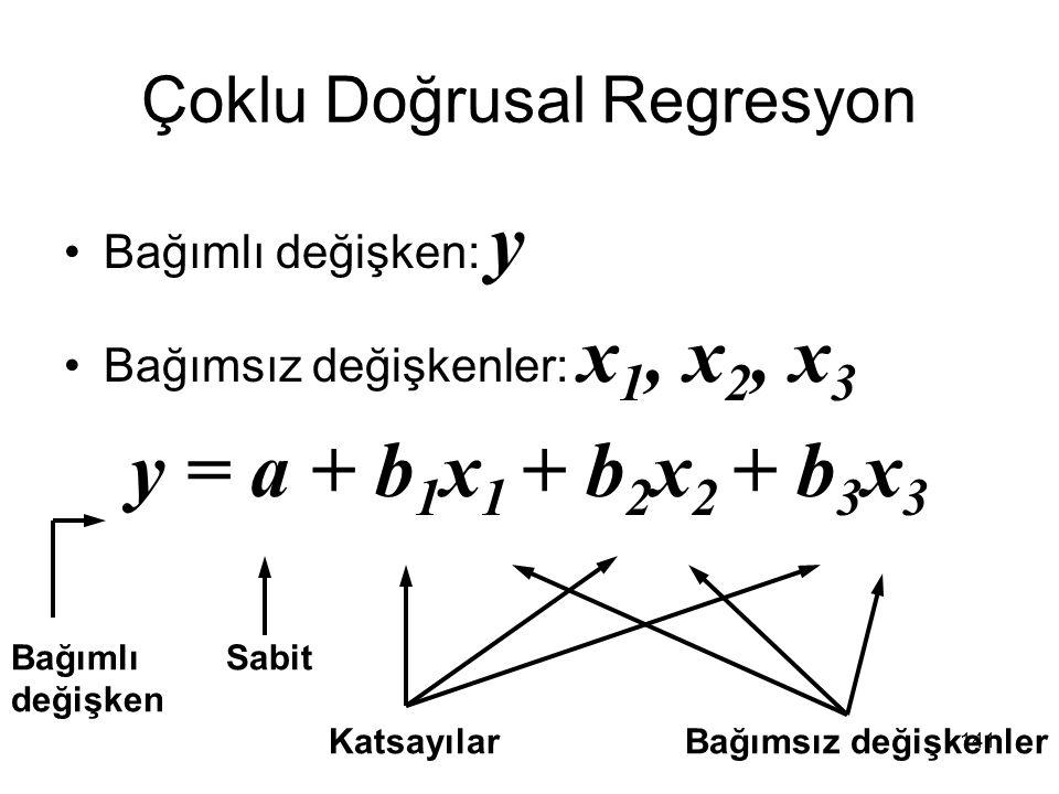 Çoklu Doğrusal Regresyon