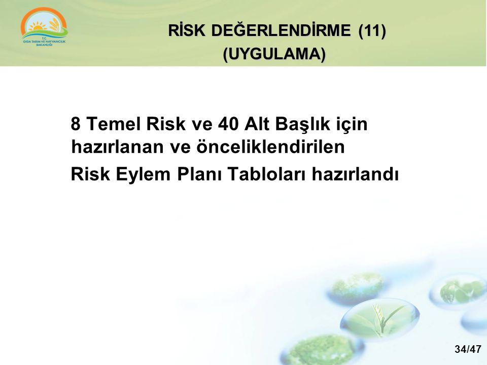 8 Temel Risk ve 40 Alt Başlık için hazırlanan ve önceliklendirilen