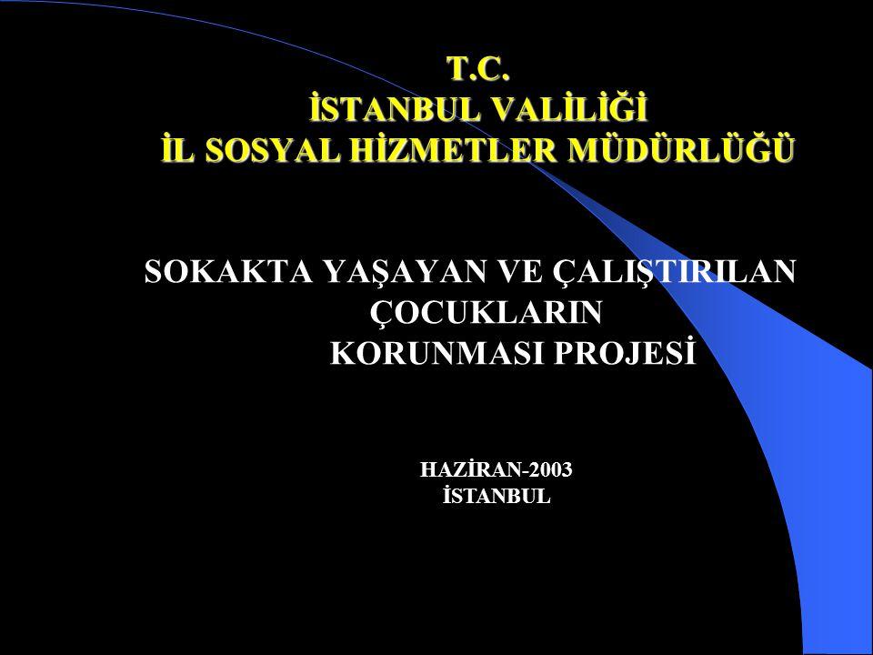 T.C. İSTANBUL VALİLİĞİ İL SOSYAL HİZMETLER MÜDÜRLÜĞÜ