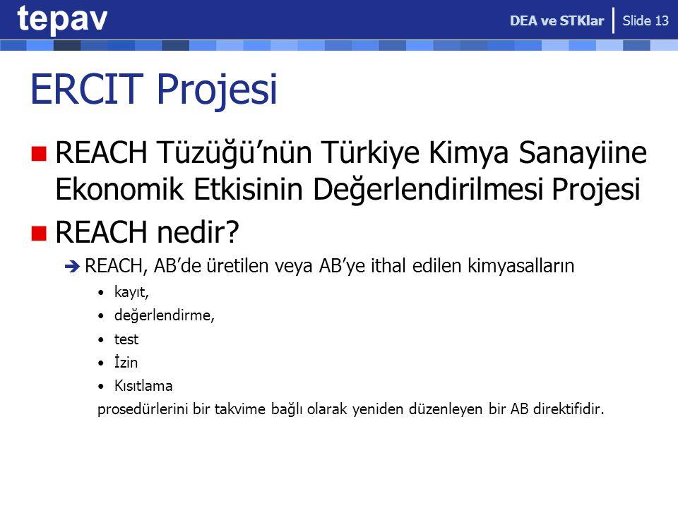 DEA ve STKlar ERCIT Projesi. REACH Tüzüğü'nün Türkiye Kimya Sanayiine Ekonomik Etkisinin Değerlendirilmesi Projesi.