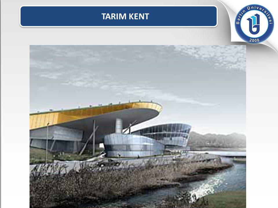 TARIM KENT