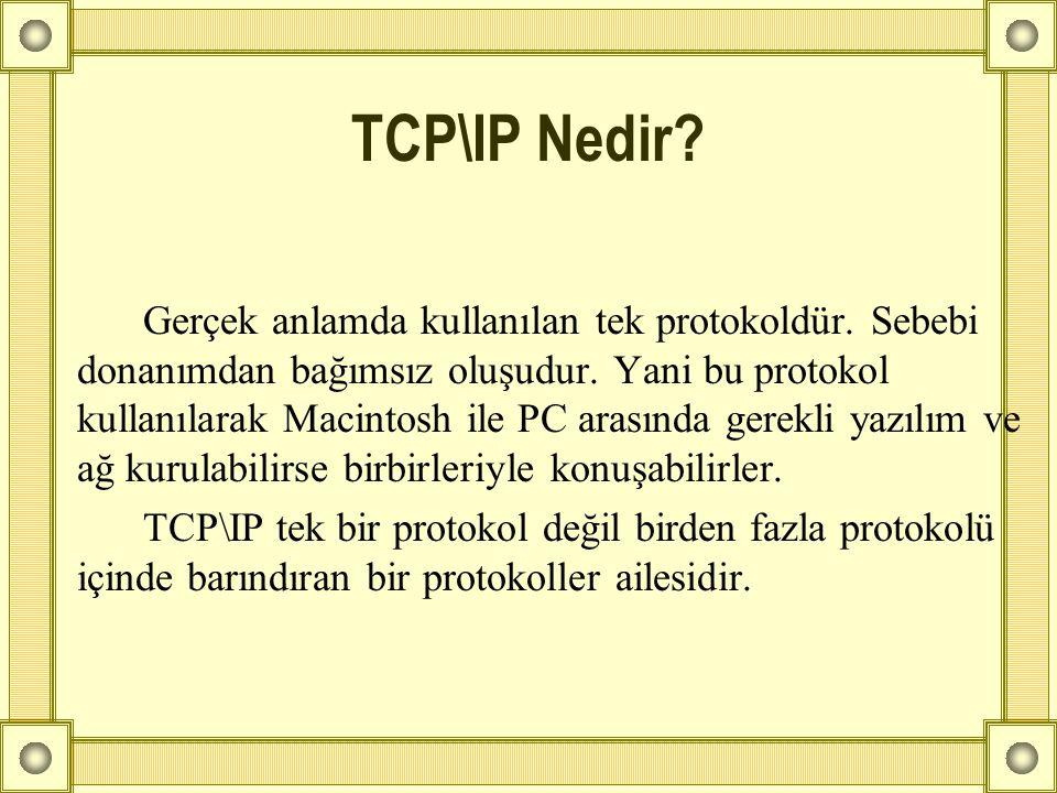 TCP\IP Nedir