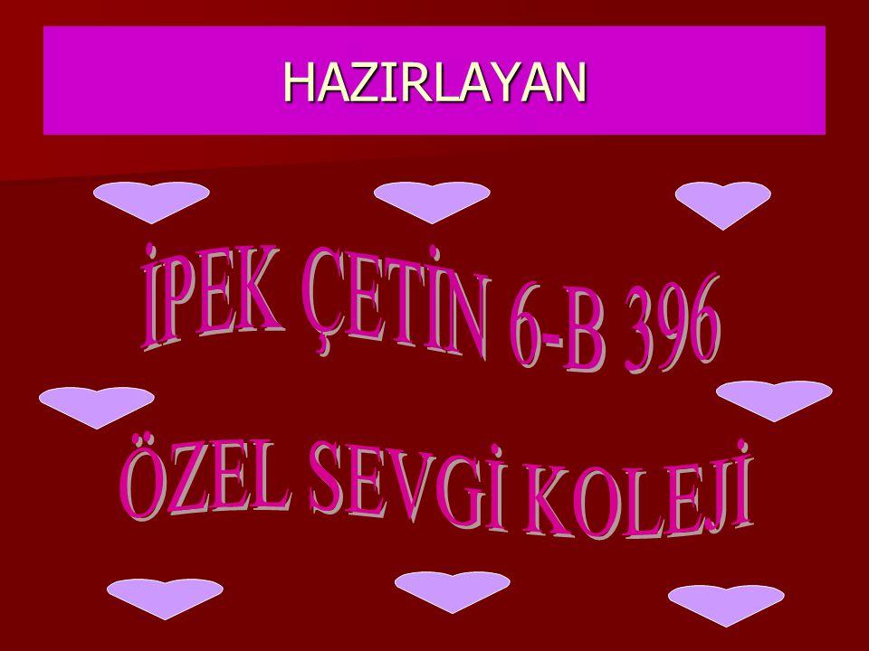 HAZIRLAYAN İPEK ÇETİN 6-B 396 ÖZEL SEVGİ KOLEJİ