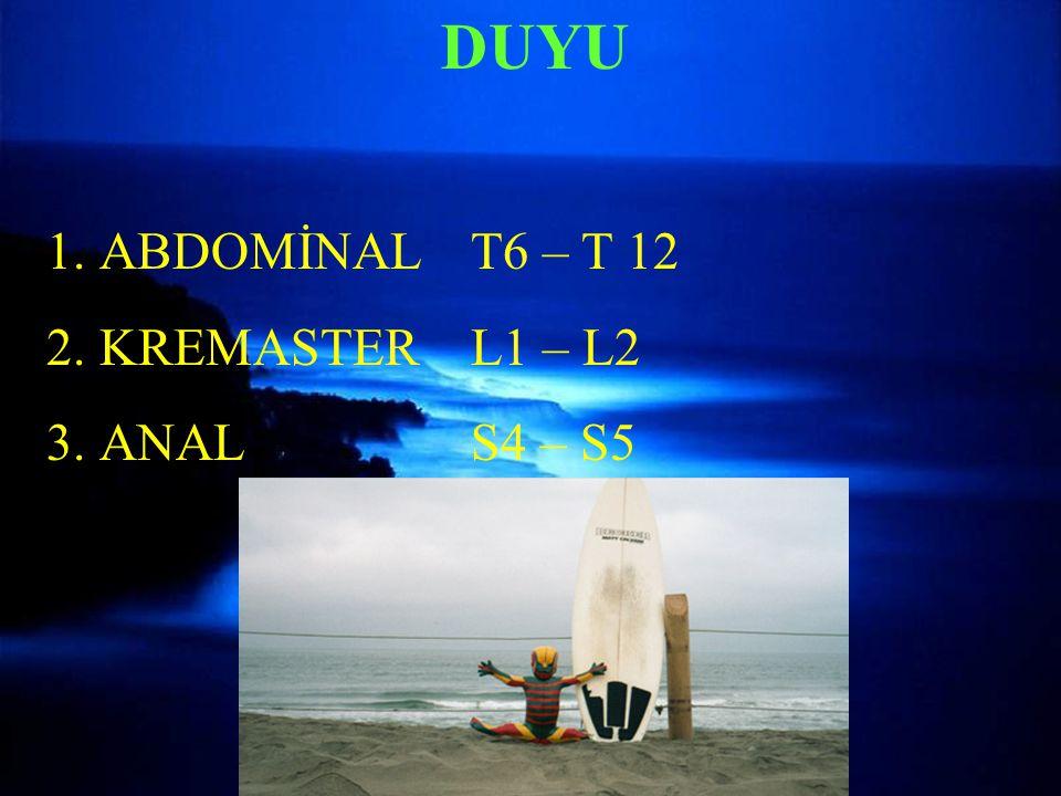 DUYU ABDOMİNAL T6 – T 12 KREMASTER L1 – L2 ANAL S4 – S5