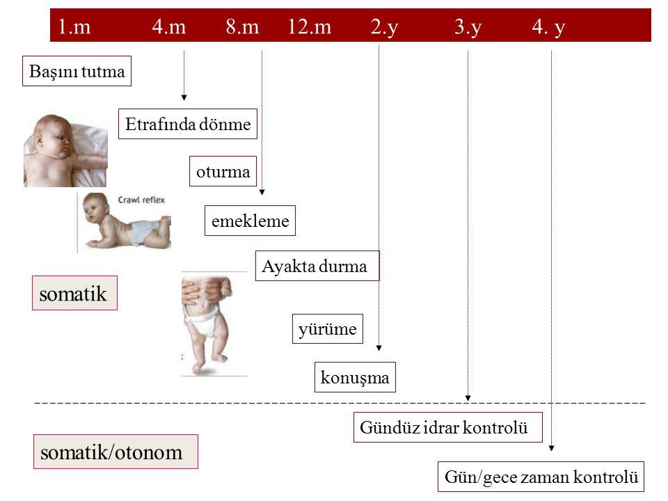 1.m 4.m 8.m 12.m 2.y 3.y 4. y somatik somatik/otonom Başını tutma