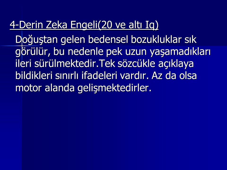 4-Derin Zeka Engeli(20 ve altı Iq)