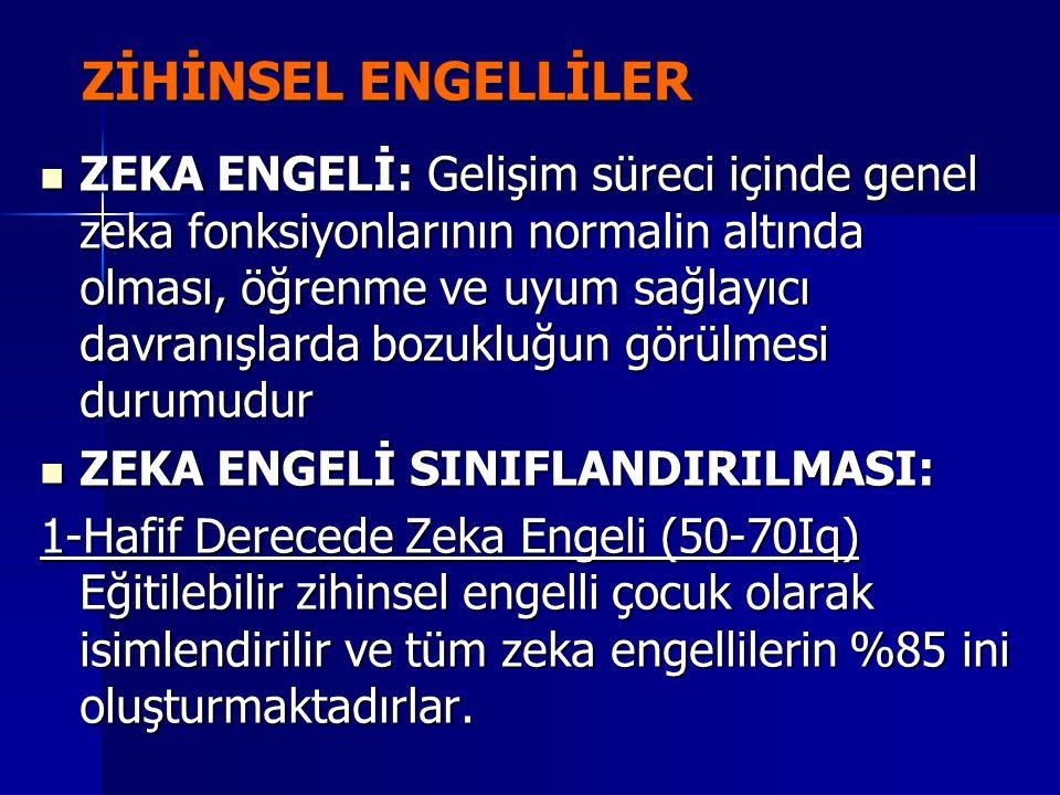 ZİHİNSEL ENGELLİLER