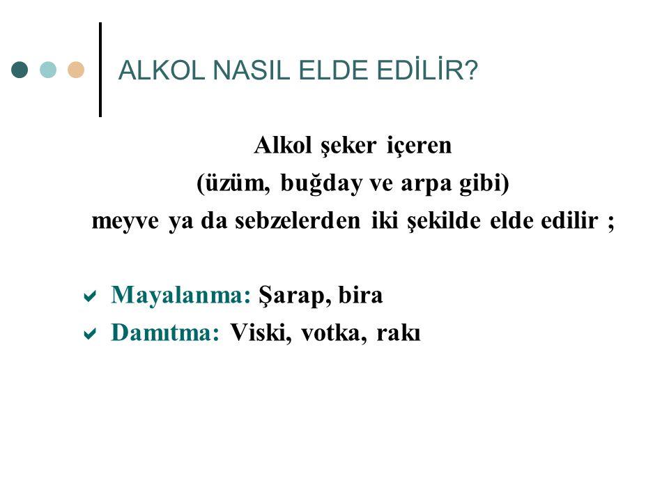 ALKOL NASIL ELDE EDİLİR