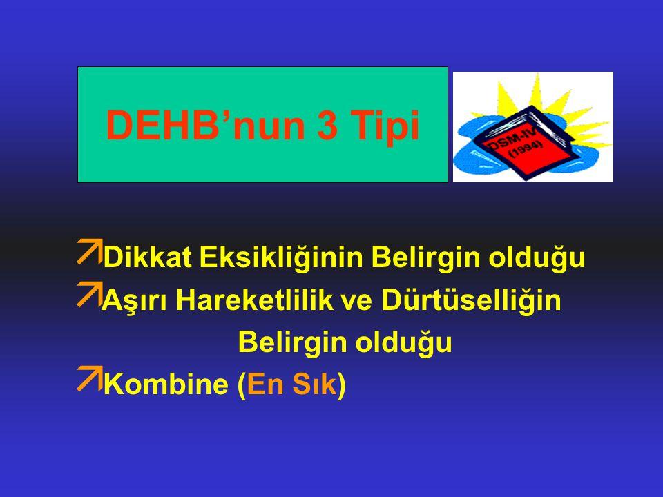 DEHB'nun 3 Tipi Dikkat Eksikliğinin Belirgin olduğu