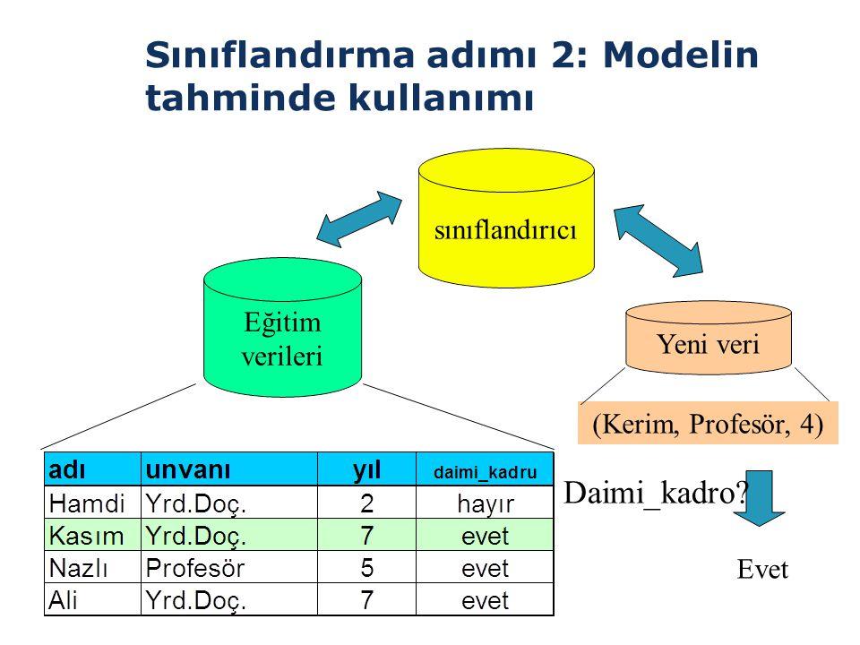 Sınıflandırma adımı 2: Modelin tahminde kullanımı