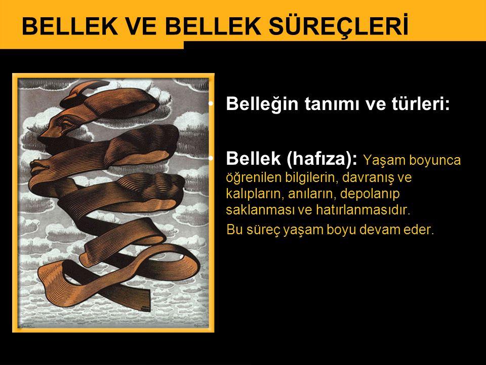 BELLEK VE BELLEK SÜREÇLERİ