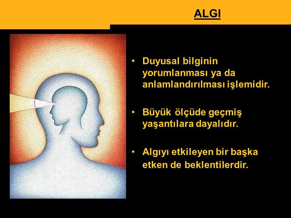 ALGI Duyusal bilginin yorumlanması ya da anlamlandırılması işlemidir.