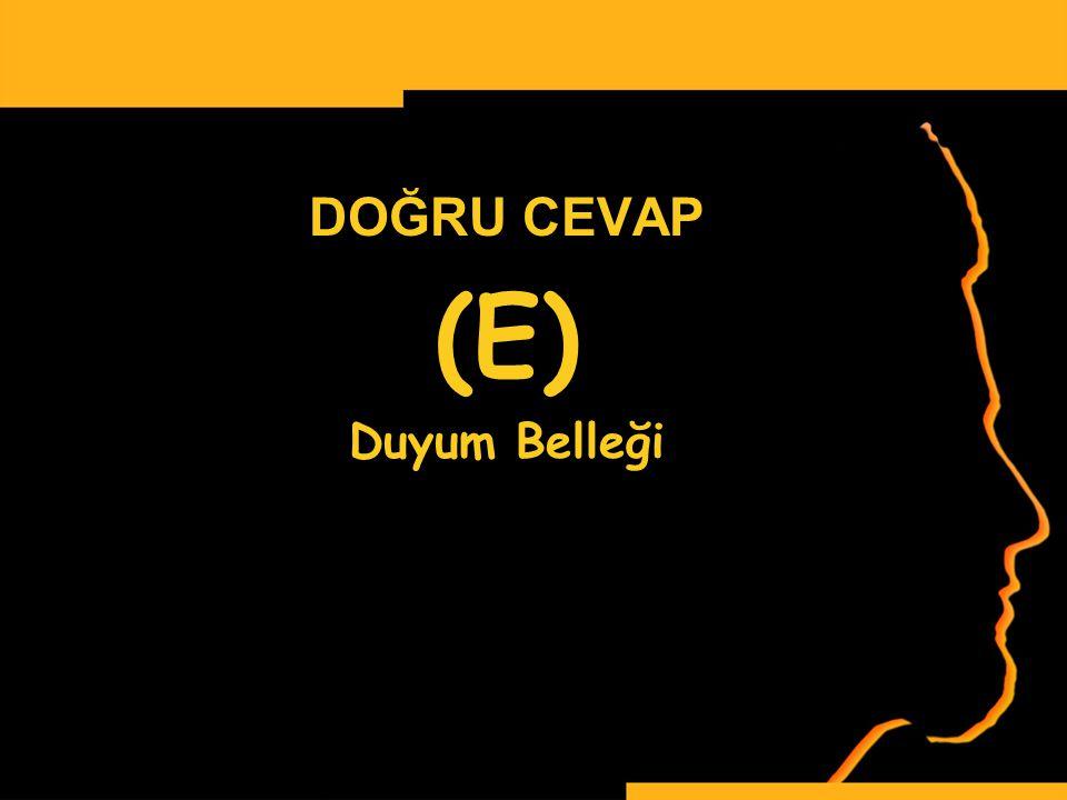 DOĞRU CEVAP (E) Duyum Belleği www.ismailbilgin.com