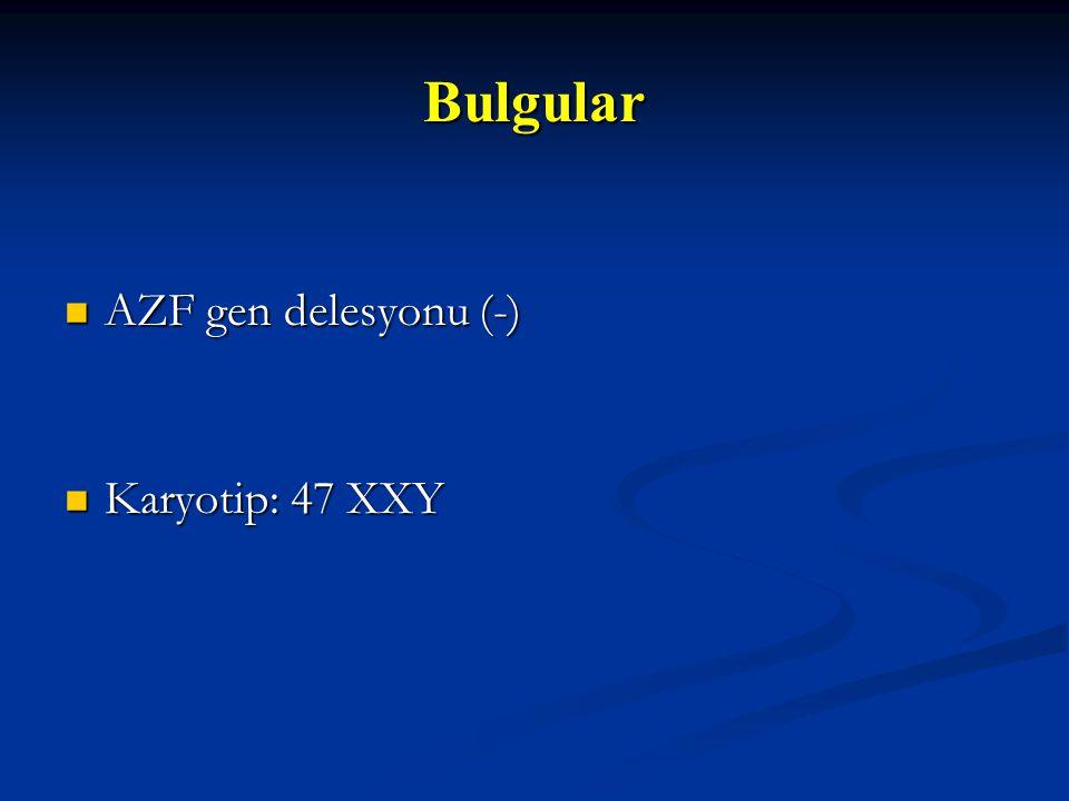 Bulgular AZF gen delesyonu (-) Karyotip: 47 XXY 19