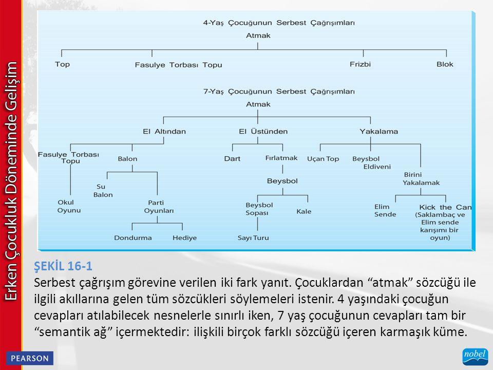 ŞEKİL 16-1