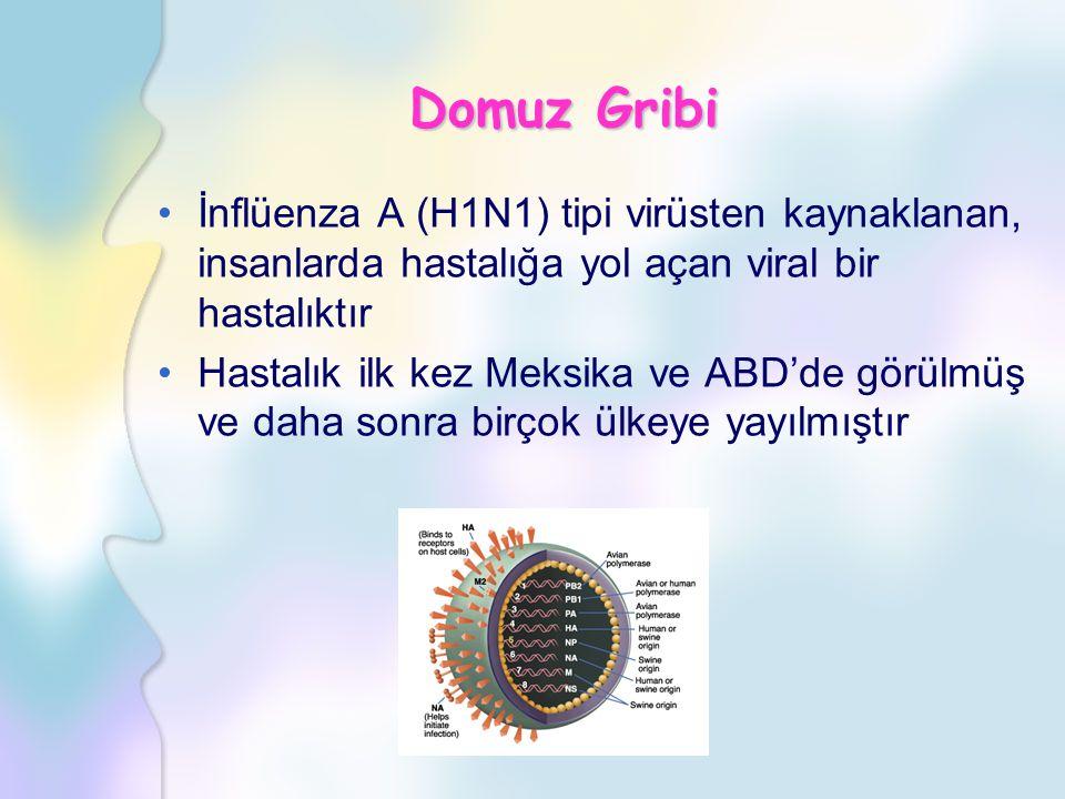 Domuz Gribi İnflüenza A (H1N1) tipi virüsten kaynaklanan, insanlarda hastalığa yol açan viral bir hastalıktır.