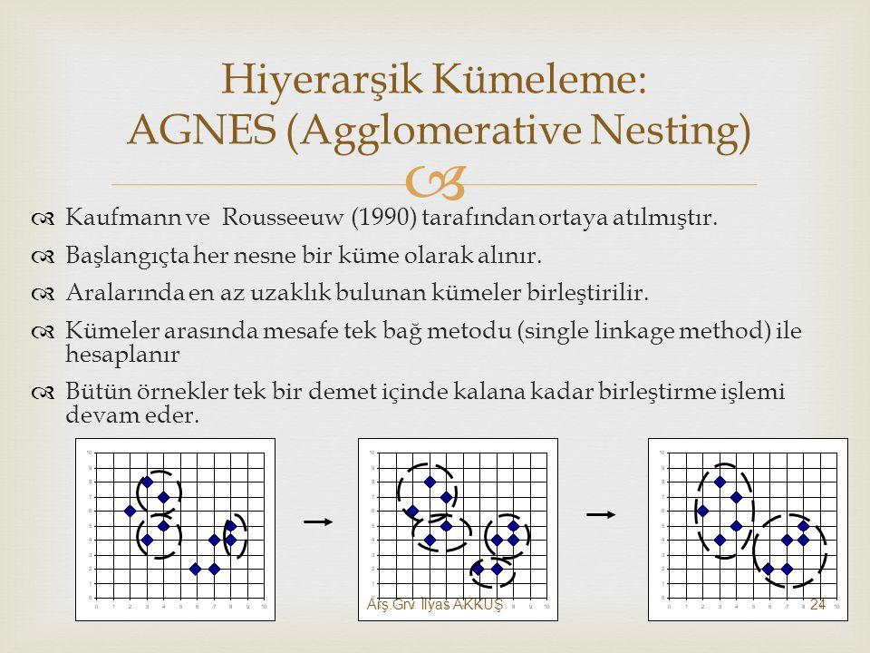 Hiyerarşik Kümeleme: AGNES (Agglomerative Nesting)