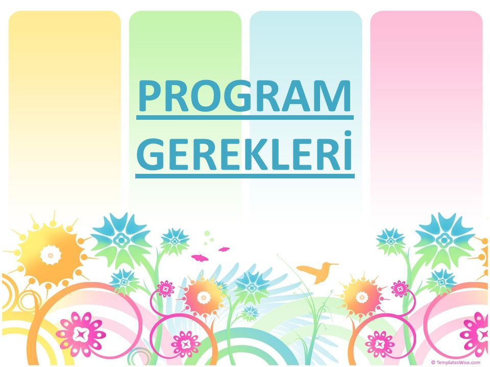 PROGRAM GEREKLERİ