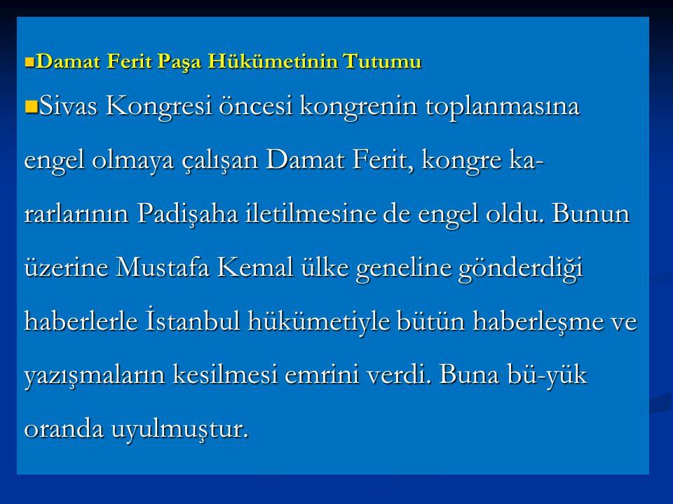 Damat Ferit Paşa Hükümetinin Tutumu