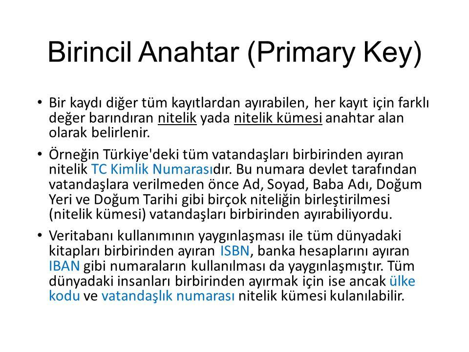 Birincil Anahtar (Primary Key)