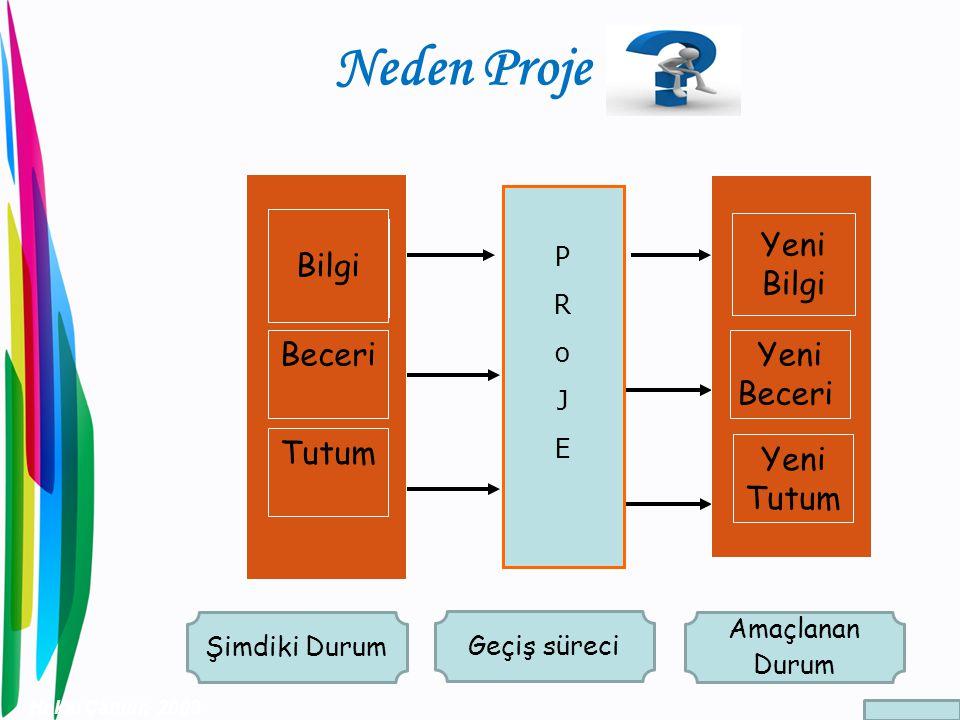 Neden Proje Bilgi Yeni Bilgi Beceri Yeni Beceri Tutum Yeni Tutum P R o
