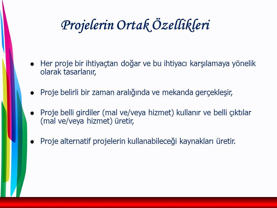 Projelerin Ortak Özellikleri