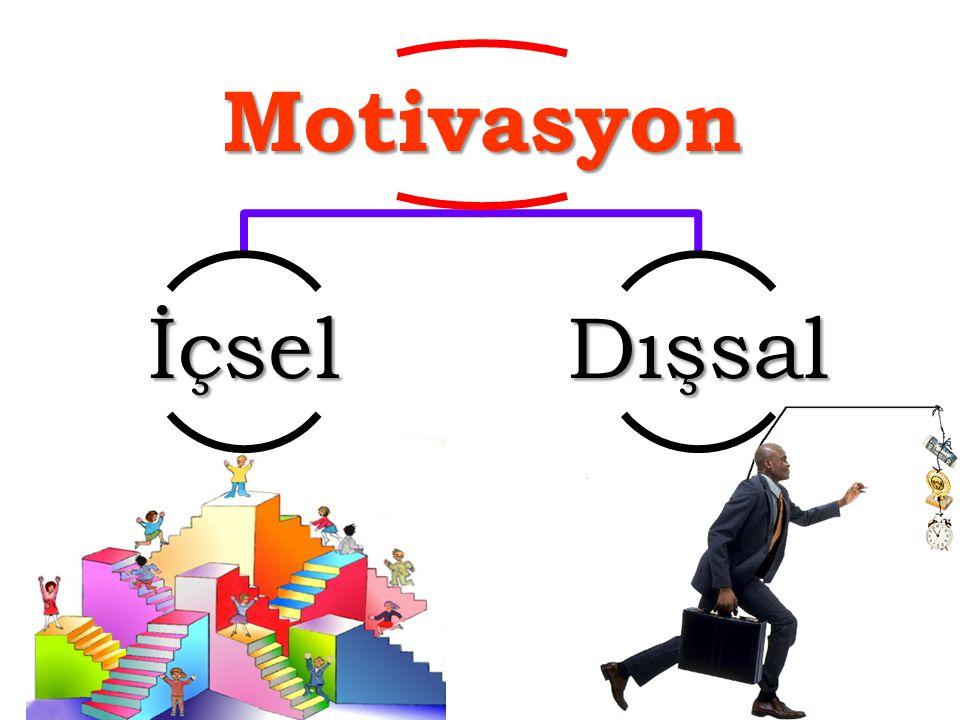 Motivasyon İçsel Dışsal