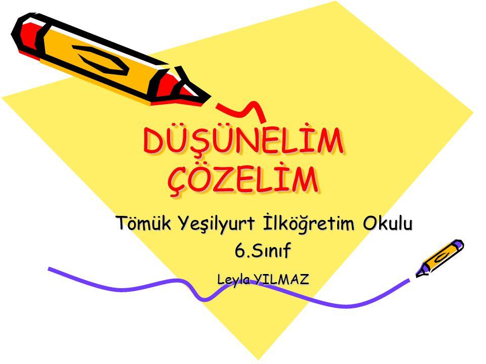 Tömük Yeşilyurt İlköğretim Okulu 6.Sınıf Leyla YILMAZ