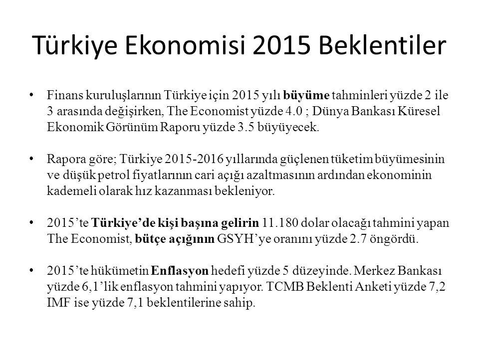 Türkiye Ekonomisi 2015 Beklentiler
