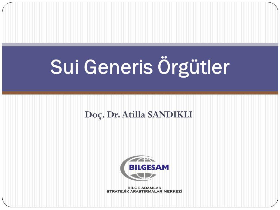 Sui Generis Örgütler Doç. Dr. Atilla SANDIKLI