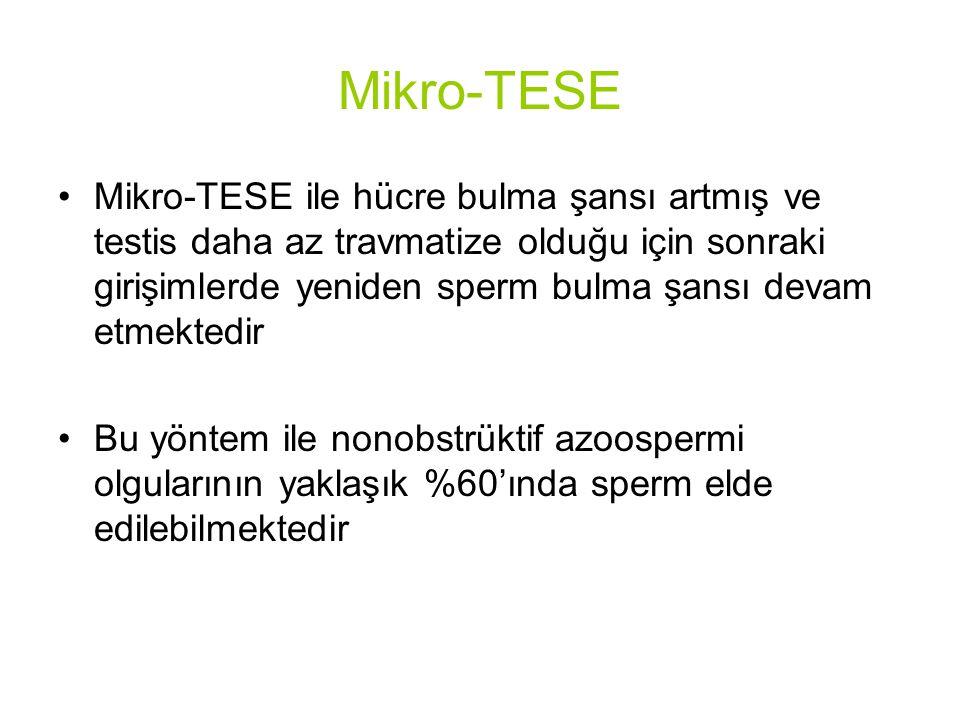 Mikro-TESE