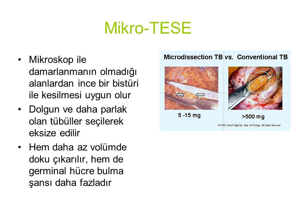 Mikro-TESE Mikroskop ile damarlanmanın olmadığı alanlardan ince bir bistüri ile kesilmesi uygun olur.