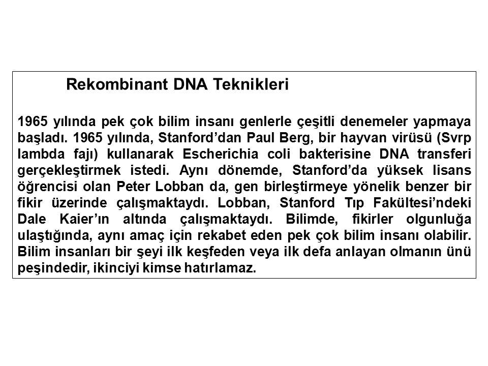 Rekombinant DNA Teknikleri