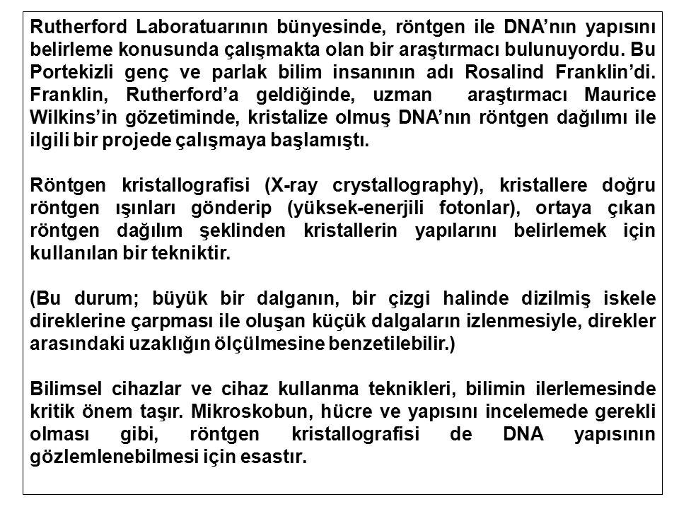 Rutherford Laboratuarının bünyesinde, röntgen ile DNA'nın yapısını belirleme konusunda çalışmakta olan bir araştırmacı bulunuyordu. Bu Portekizli genç ve parlak bilim insanının adı Rosalind Franklin'di. Franklin, Rutherford'a geldiğinde, uzman araştırmacı Maurice Wilkins'in gözetiminde, kristalize olmuş DNA'nın röntgen dağılımı ile ilgili bir projede çalışmaya başlamıştı.