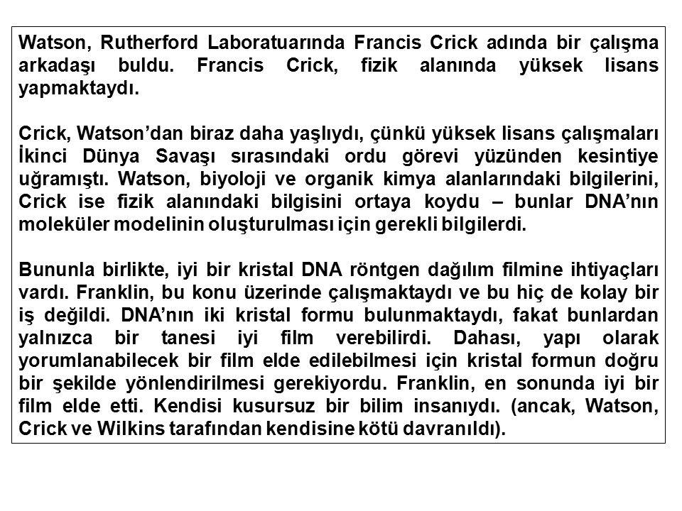 Watson, Rutherford Laboratuarında Francis Crick adında bir çalışma arkadaşı buldu. Francis Crick, fizik alanında yüksek lisans yapmaktaydı.