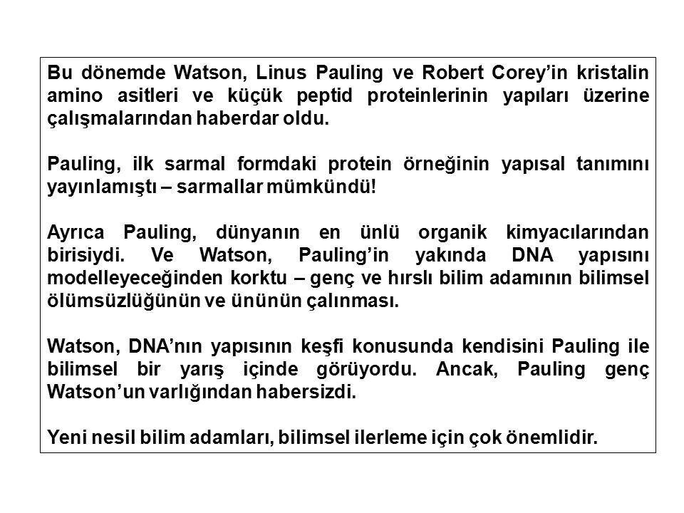 Bu dönemde Watson, Linus Pauling ve Robert Corey'in kristalin amino asitleri ve küçük peptid proteinlerinin yapıları üzerine çalışmalarından haberdar oldu.
