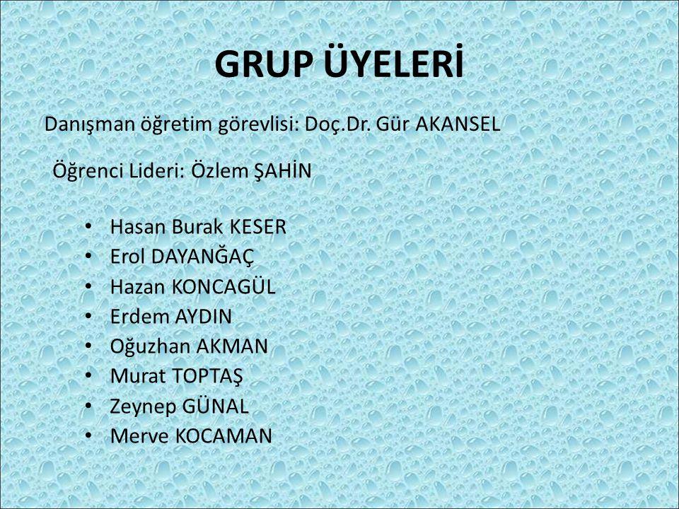 GRUP ÜYELERİ Danışman öğretim görevlisi: Doç.Dr. Gür AKANSEL