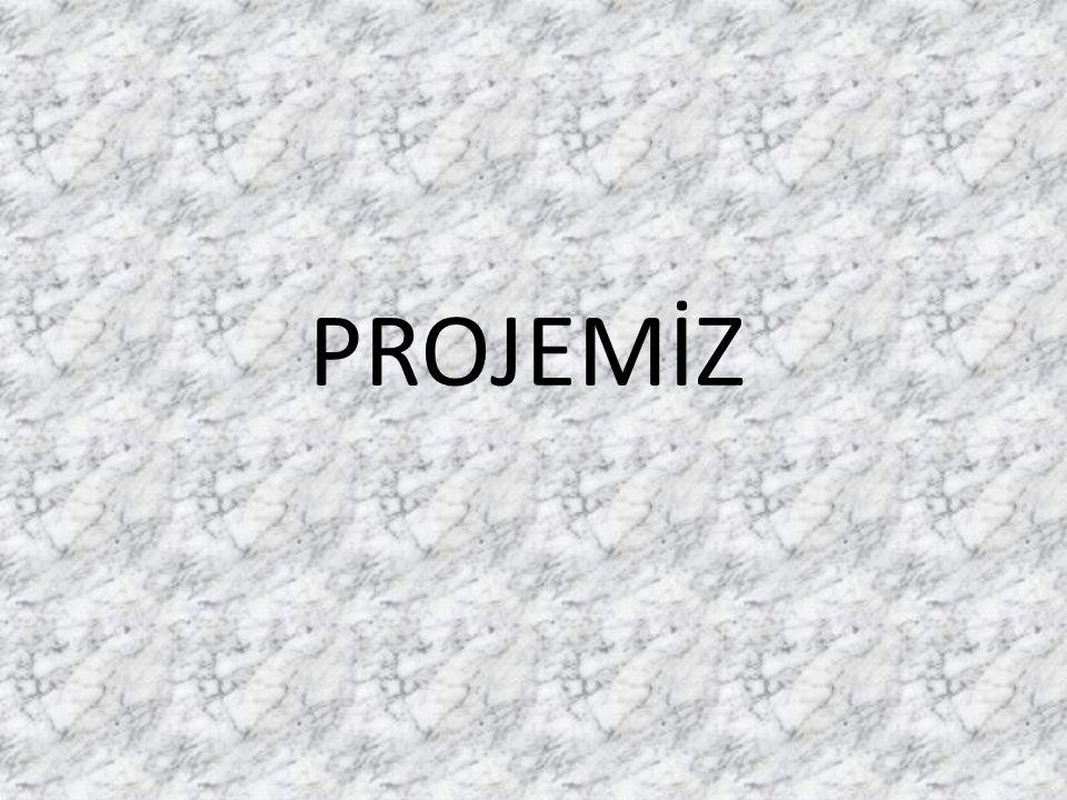 PROJEMİZ