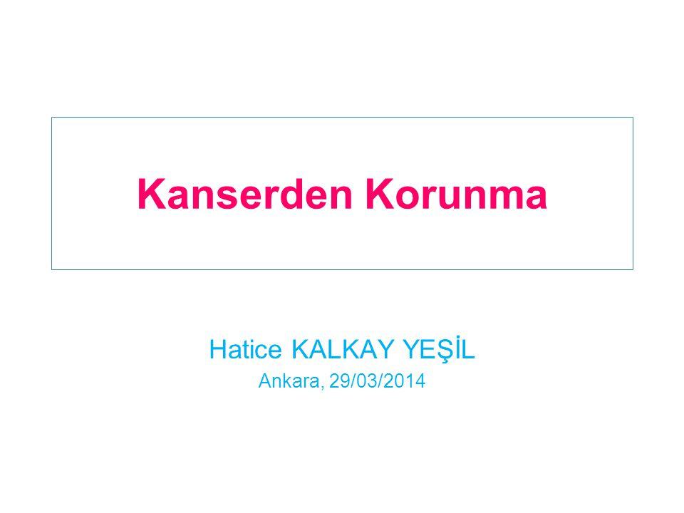 Hatice KALKAY YEŞİL Ankara, 29/03/2014