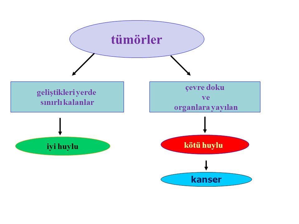tümörler kanser çevre doku geliştikleri yerde ve sınırlı kalanlar