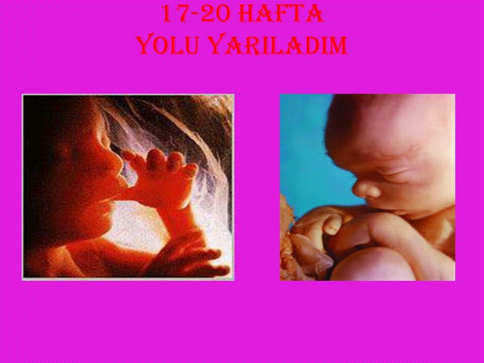 17-20 HAFTA YOLU YARILADIM