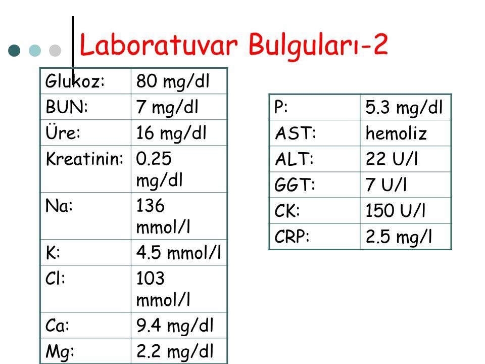 Laboratuvar Bulguları-2